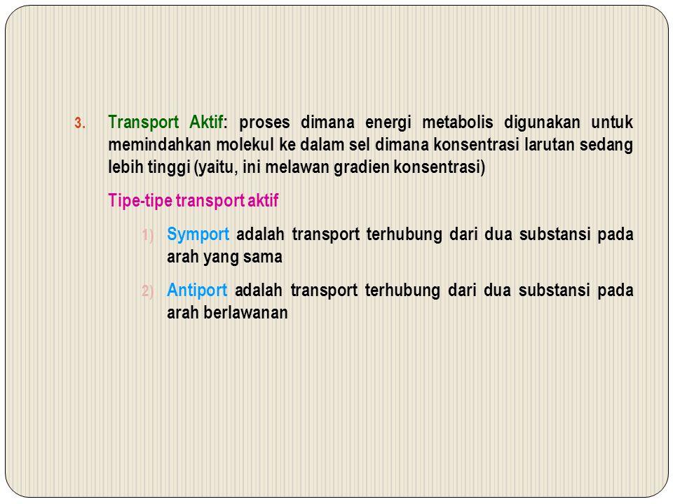 Transport Aktif: proses dimana energi metabolis digunakan untuk memindahkan molekul ke dalam sel dimana konsentrasi larutan sedang lebih tinggi (yaitu, ini melawan gradien konsentrasi)