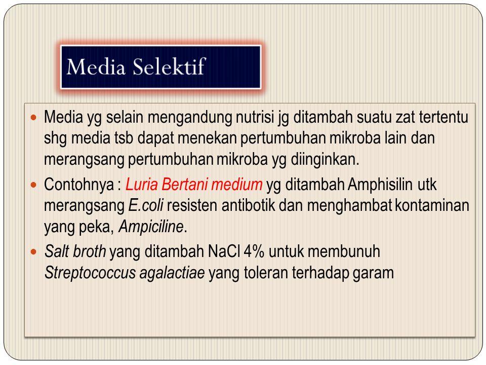 Media Selektif