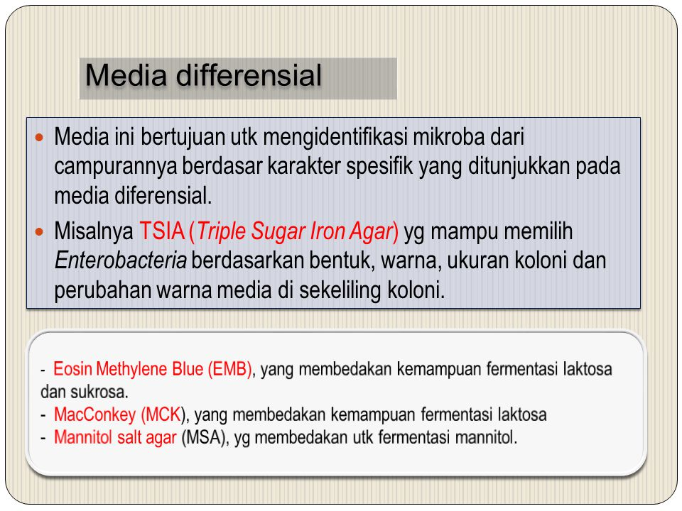 Media differensial
