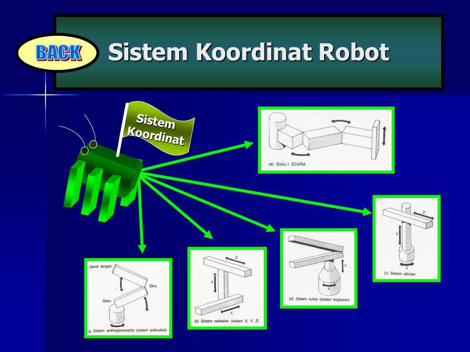 Sistem Koordinat Robot