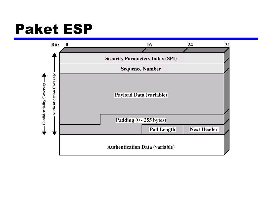 Paket ESP