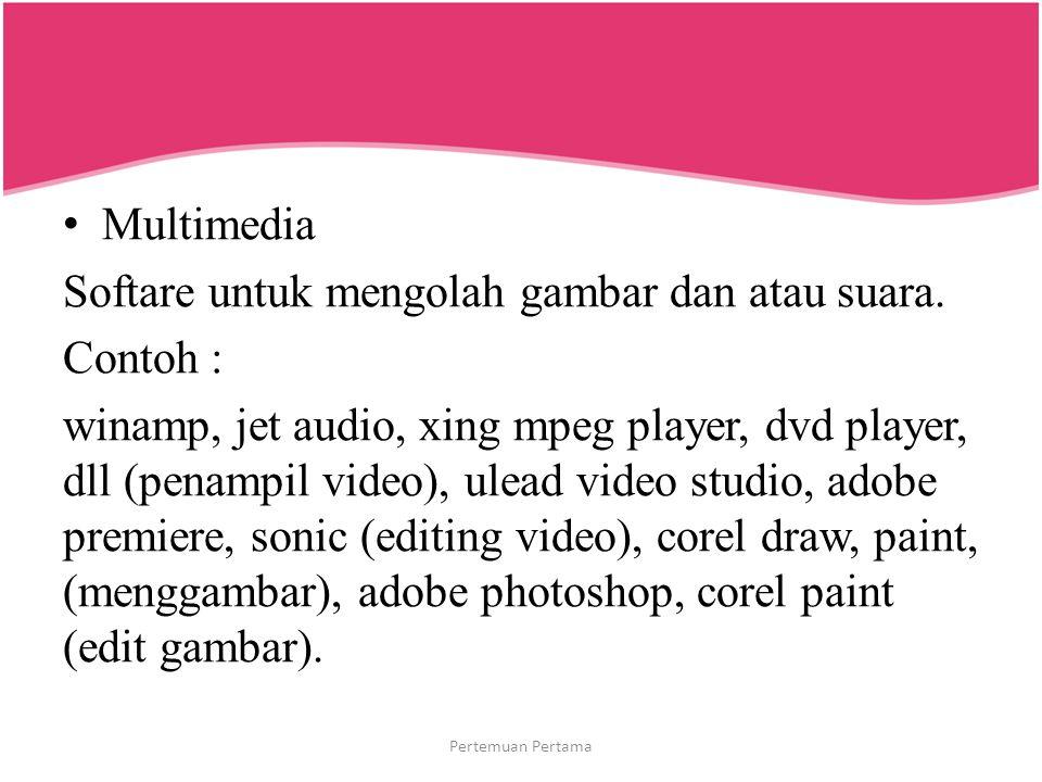 Softare untuk mengolah gambar dan atau suara. Contoh :