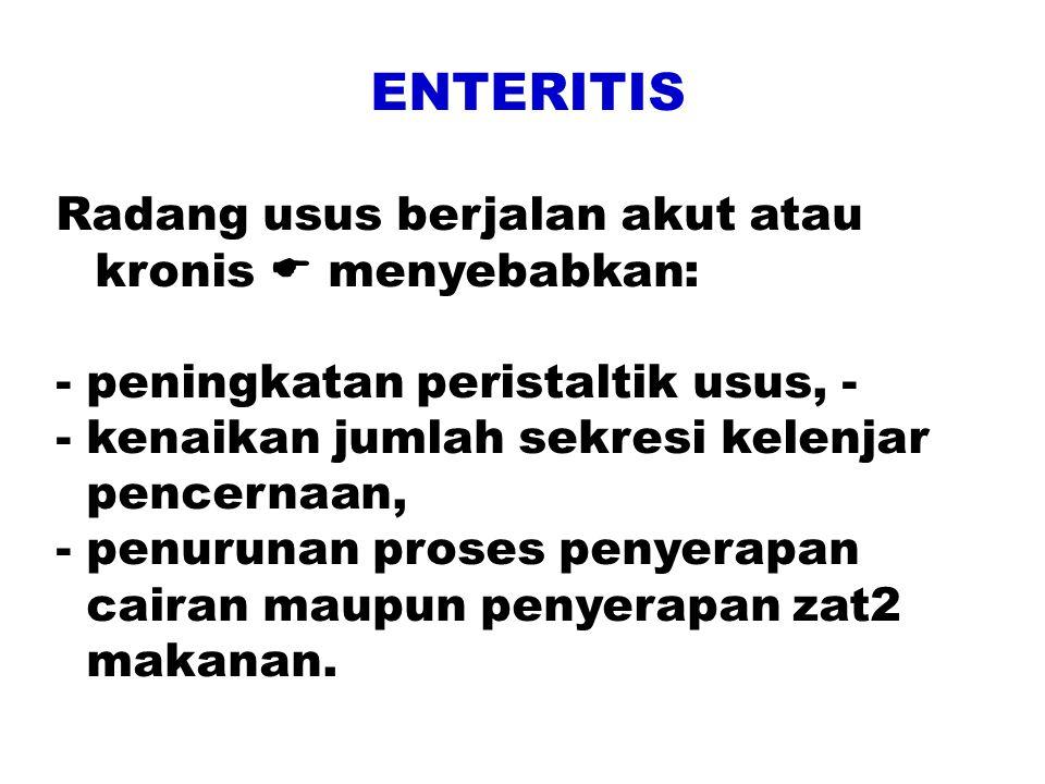 ENTERITIS Radang usus berjalan akut atau kronis  menyebabkan: