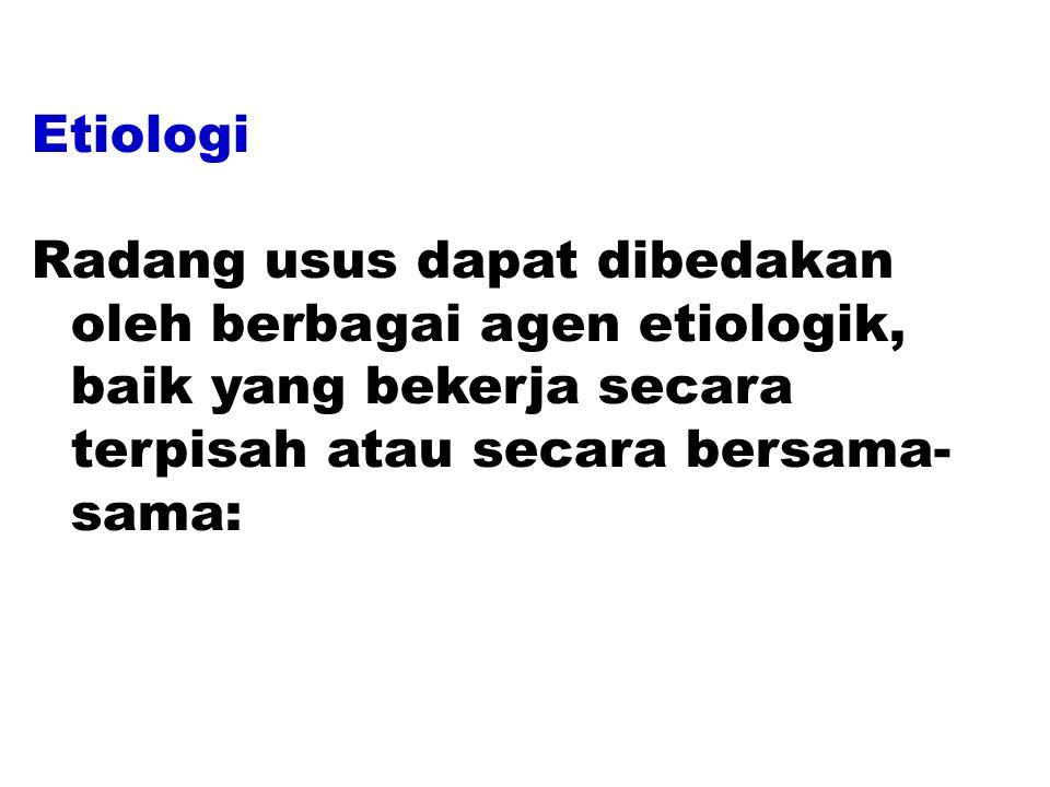 Etiologi Radang usus dapat dibedakan oleh berbagai agen etiologik, baik yang bekerja secara terpisah atau secara bersama-sama: