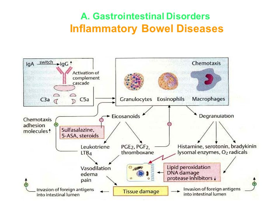 A. Gastrointestinal Disorders Inflammatory Bowel Diseases
