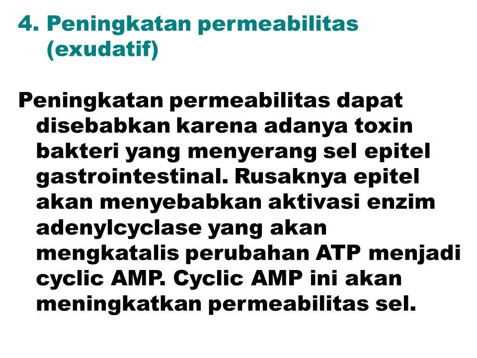 4. Peningkatan permeabilitas
