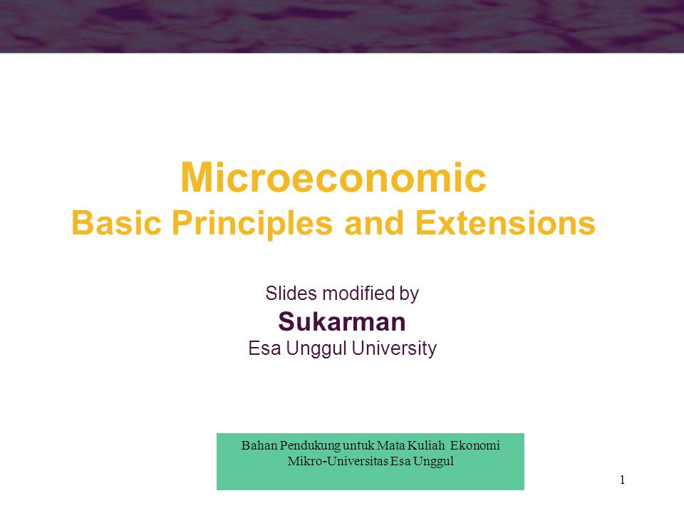 Microeconomic Basic Principles and Extensions