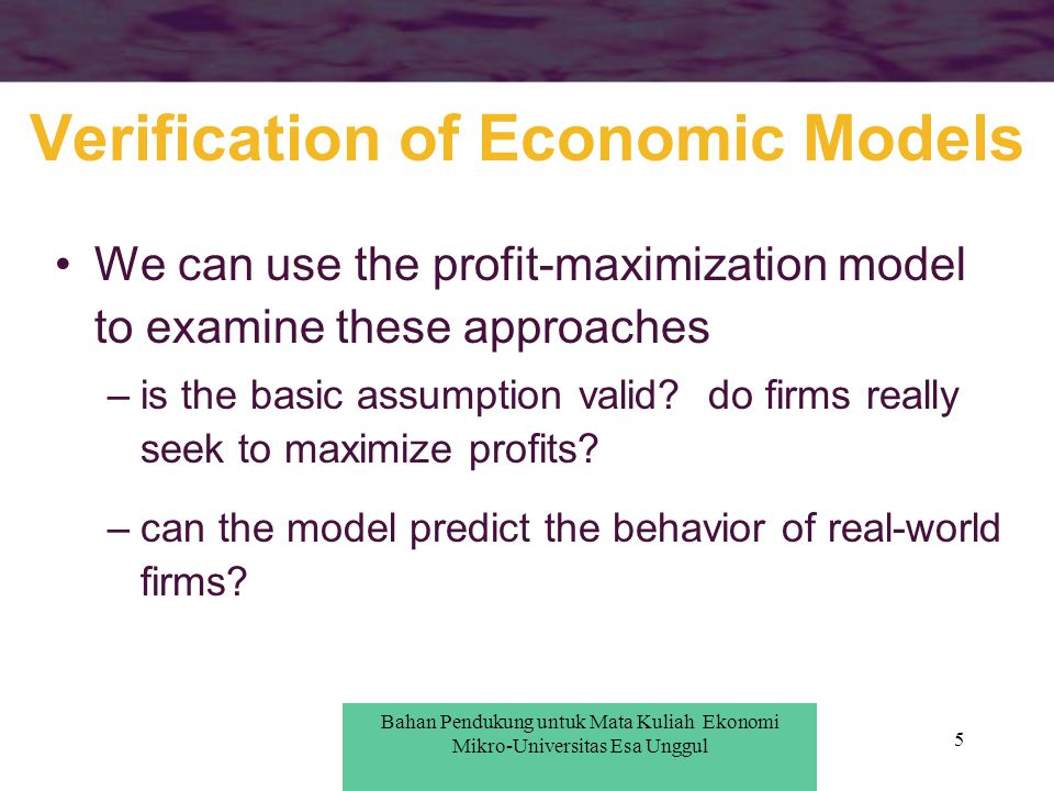 Verification of Economic Models