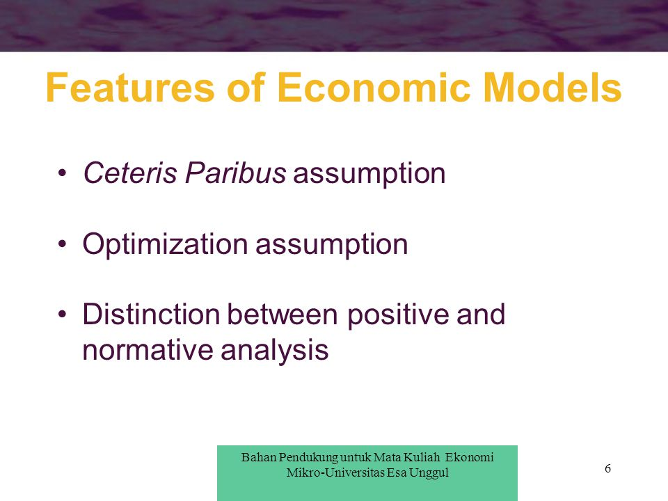 Features of Economic Models