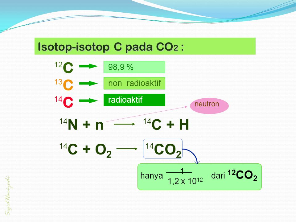 Isotop-isotop C pada CO2 :