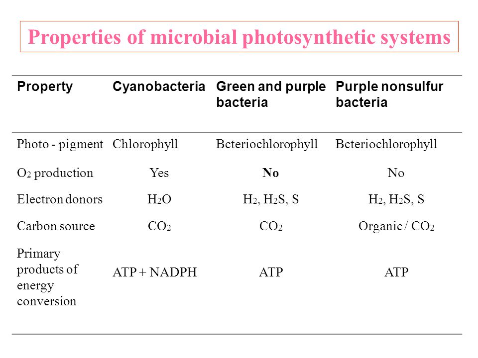 Properties of microbial photosynthetic systems
