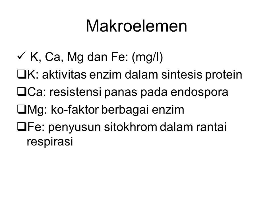Makroelemen K, Ca, Mg dan Fe: (mg/l)