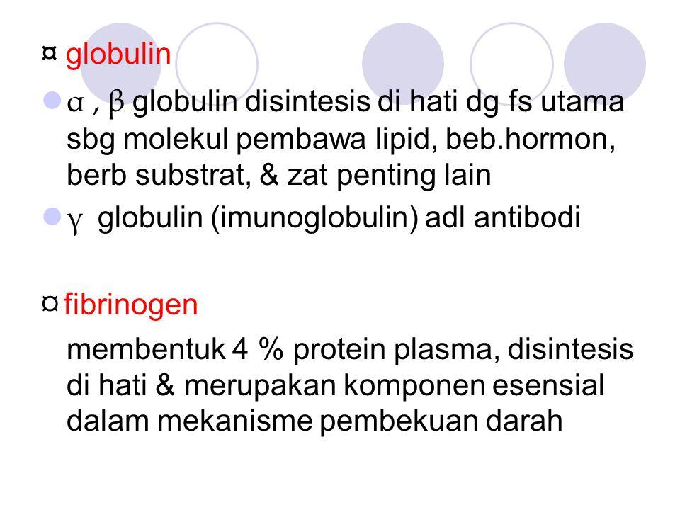 ¤ globulin α , β globulin disintesis di hati dg fs utama sbg molekul pembawa lipid, beb.hormon, berb substrat, & zat penting lain.