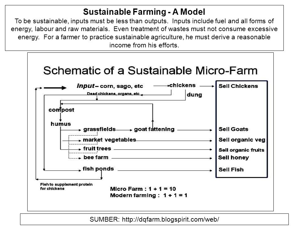 Sustainable Farming - A Model