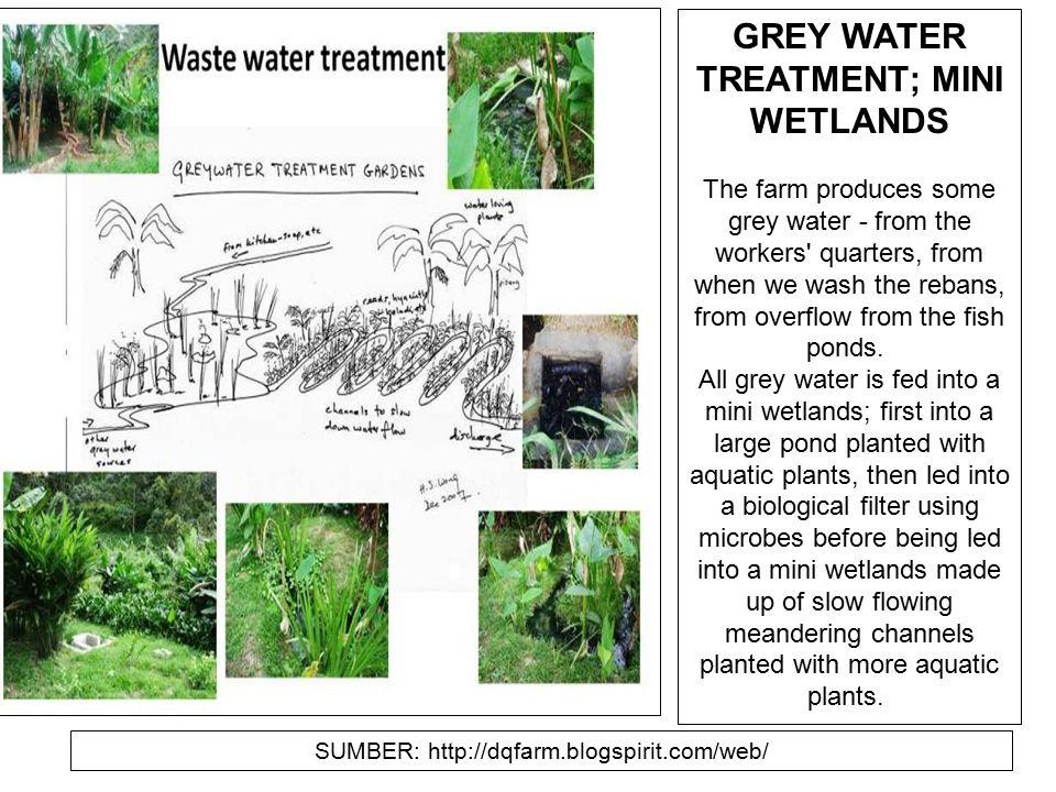 GREY WATER TREATMENT; MINI WETLANDS