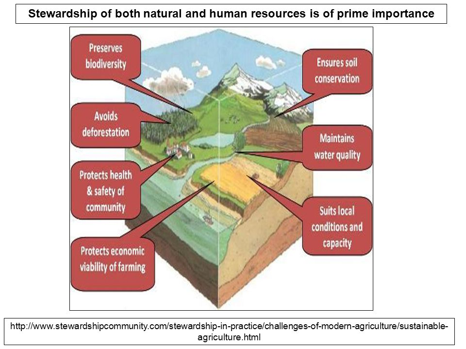 Stewardship of both natural and human resources is of prime importance