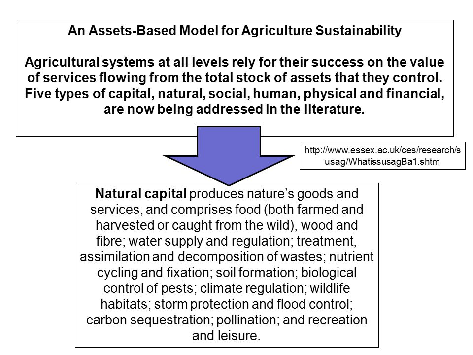 An Assets-Based Model for Agriculture Sustainability
