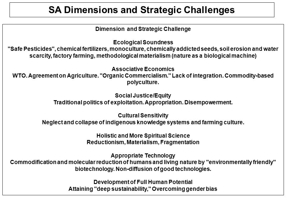 SA Dimensions and Strategic Challenges