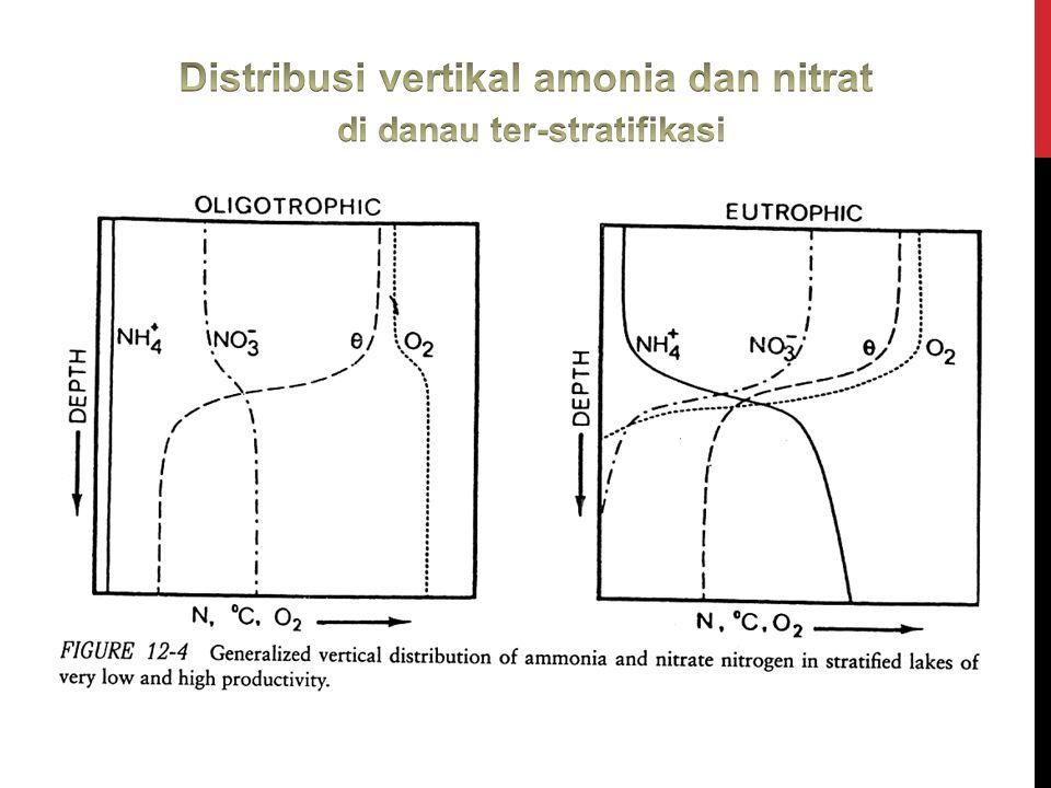 Distribusi vertikal amonia dan nitrat di danau ter-stratifikasi