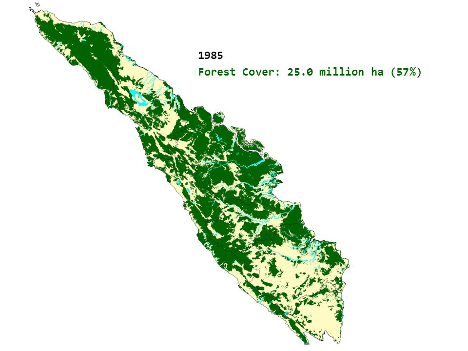 Natural Forest Cover in Sumatra