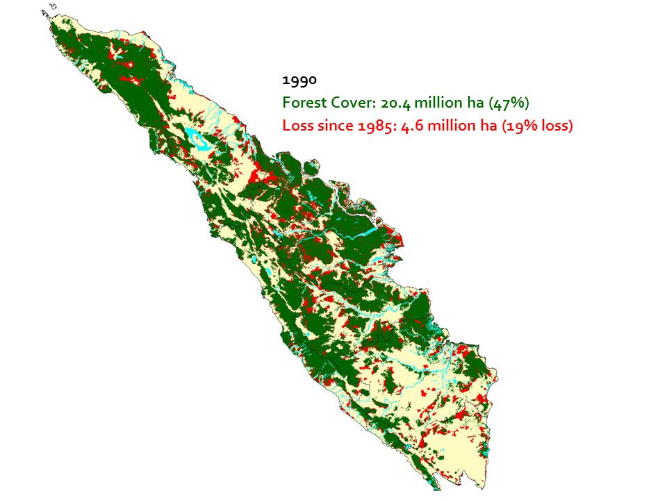 1990 Forest Cover: 20.4 million ha (47%) Loss since 1985: 4.6 million ha (19% loss)