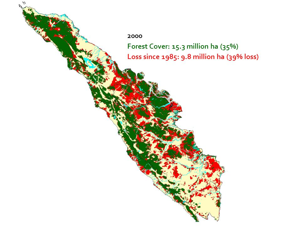 2000 Forest Cover: 15.3 million ha (35%) Loss since 1985: 9.8 million ha (39% loss)