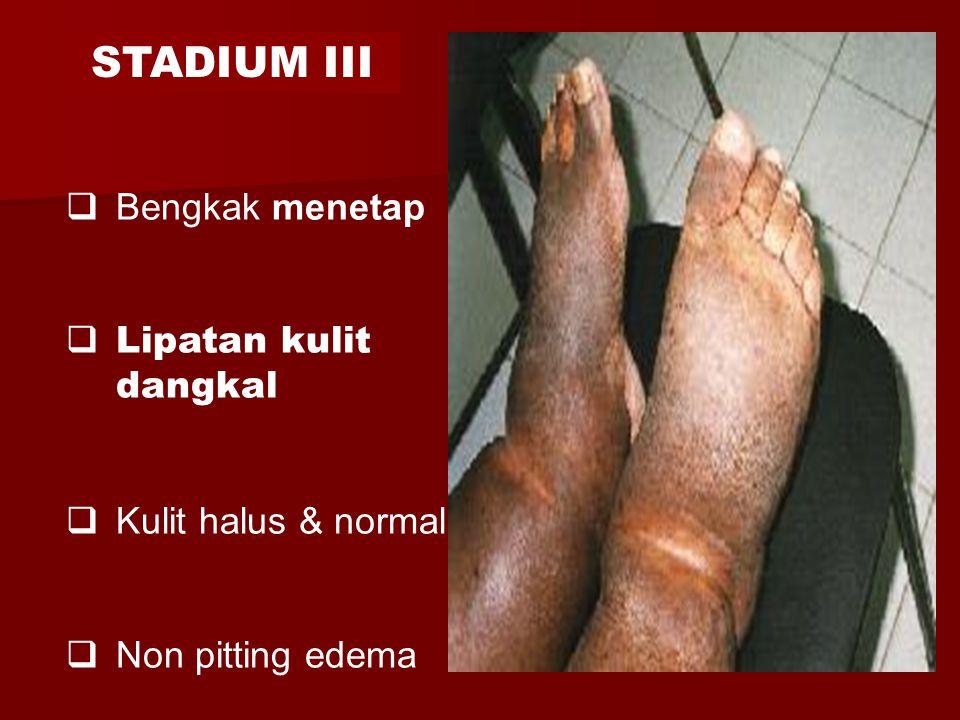 STADIUM III Bengkak menetap Lipatan kulit dangkal Kulit halus & normal