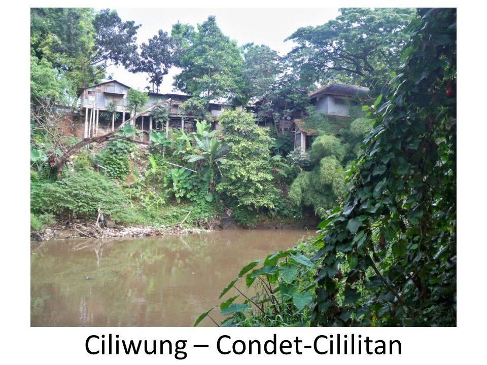 Ciliwung – Condet-Cililitan