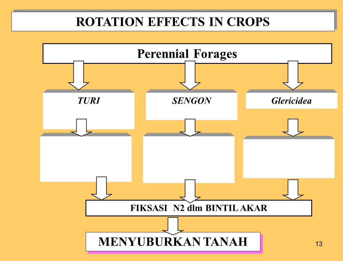 ROTATION EFFECTS IN CROPS FIKSASI N2 dlm BINTIL AKAR