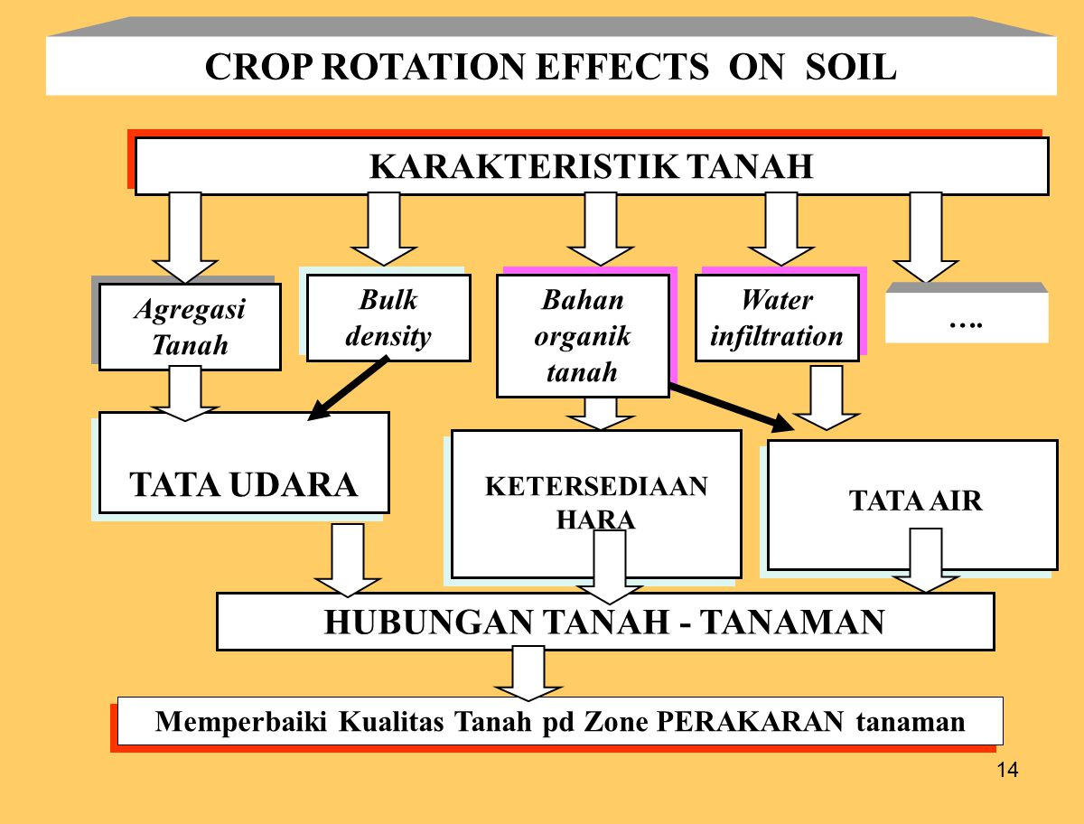 CROP ROTATION EFFECTS ON SOIL