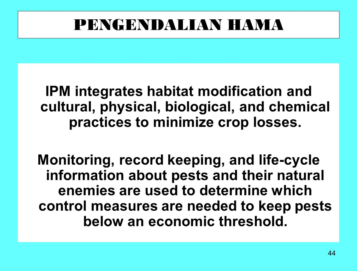 PENGENDALIAN HAMA IPM integrates habitat modification and cultural, physical, biological, and chemical practices to minimize crop losses.