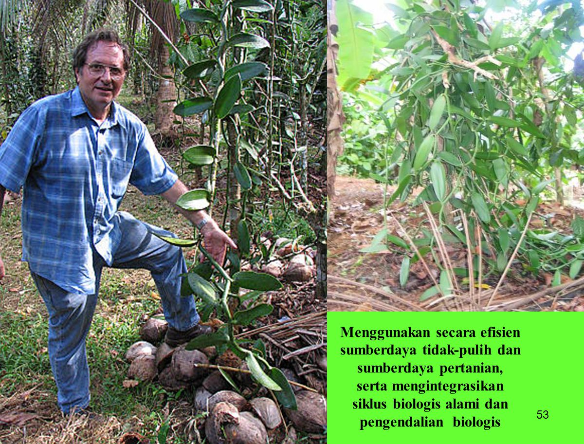 Menggunakan secara efisien sumberdaya tidak-pulih dan sumberdaya pertanian, serta mengintegrasikan siklus biologis alami dan pengendalian biologis