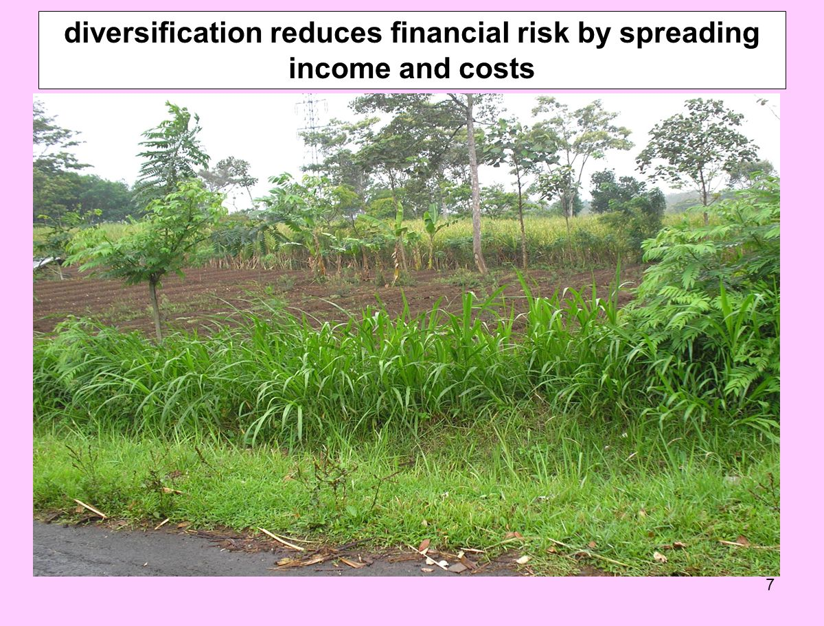 diversification reduces financial risk by spreading income and costs