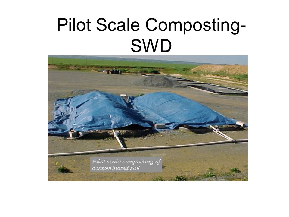 Pilot Scale Composting-SWD