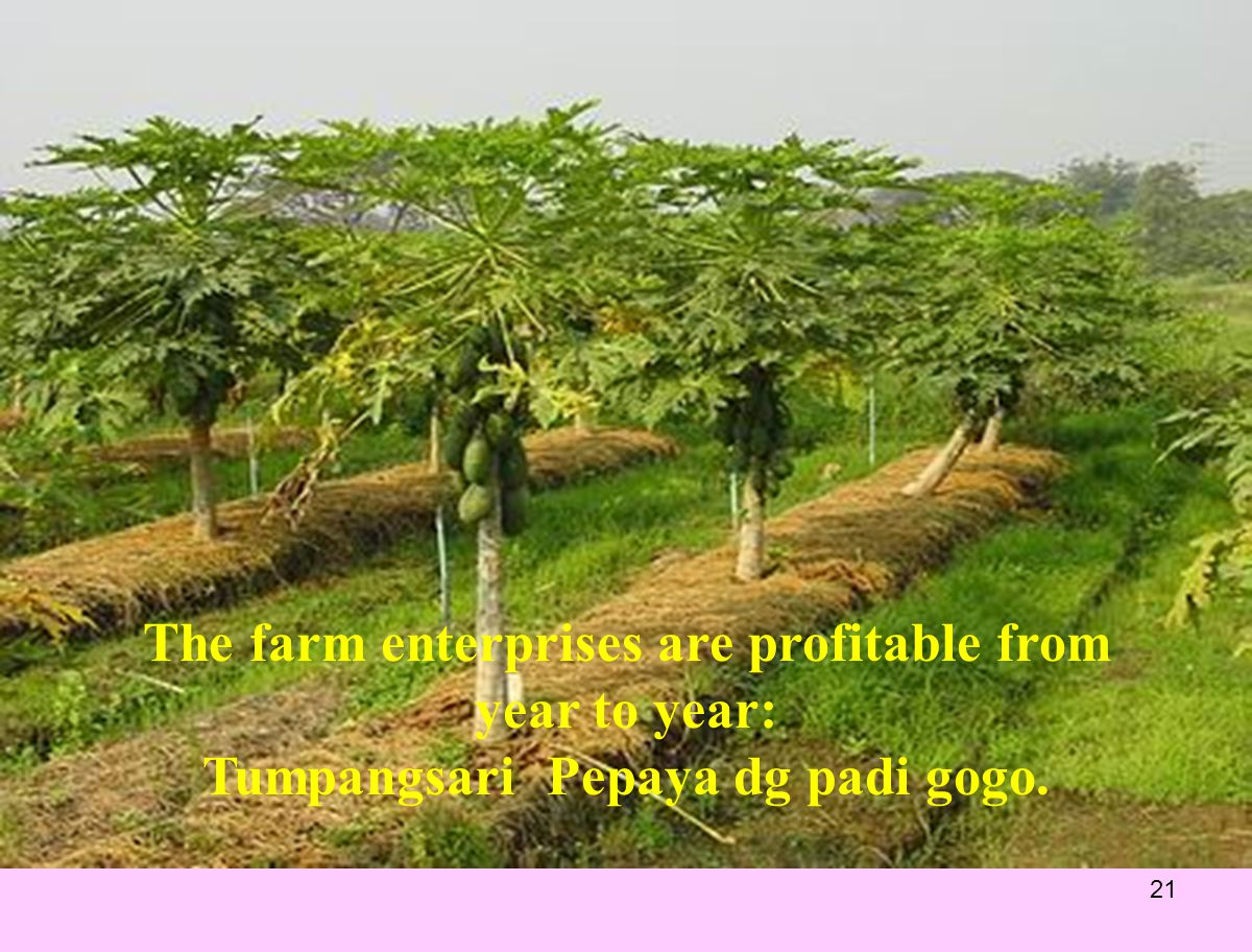 The farm enterprises are profitable from year to year: