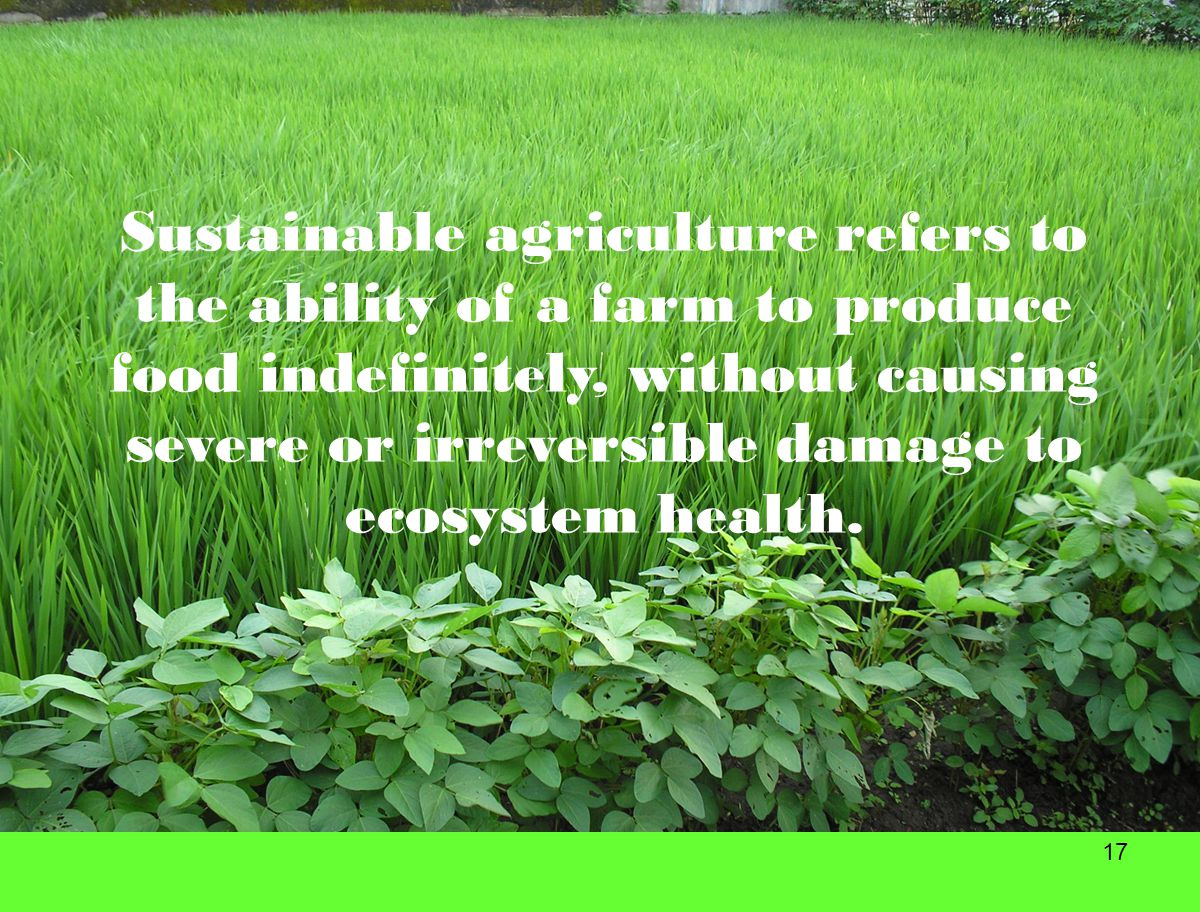 Sustainable agriculture refers to the ability of a farm to produce food indefinitely, without causing severe or irreversible damage to ecosystem health.
