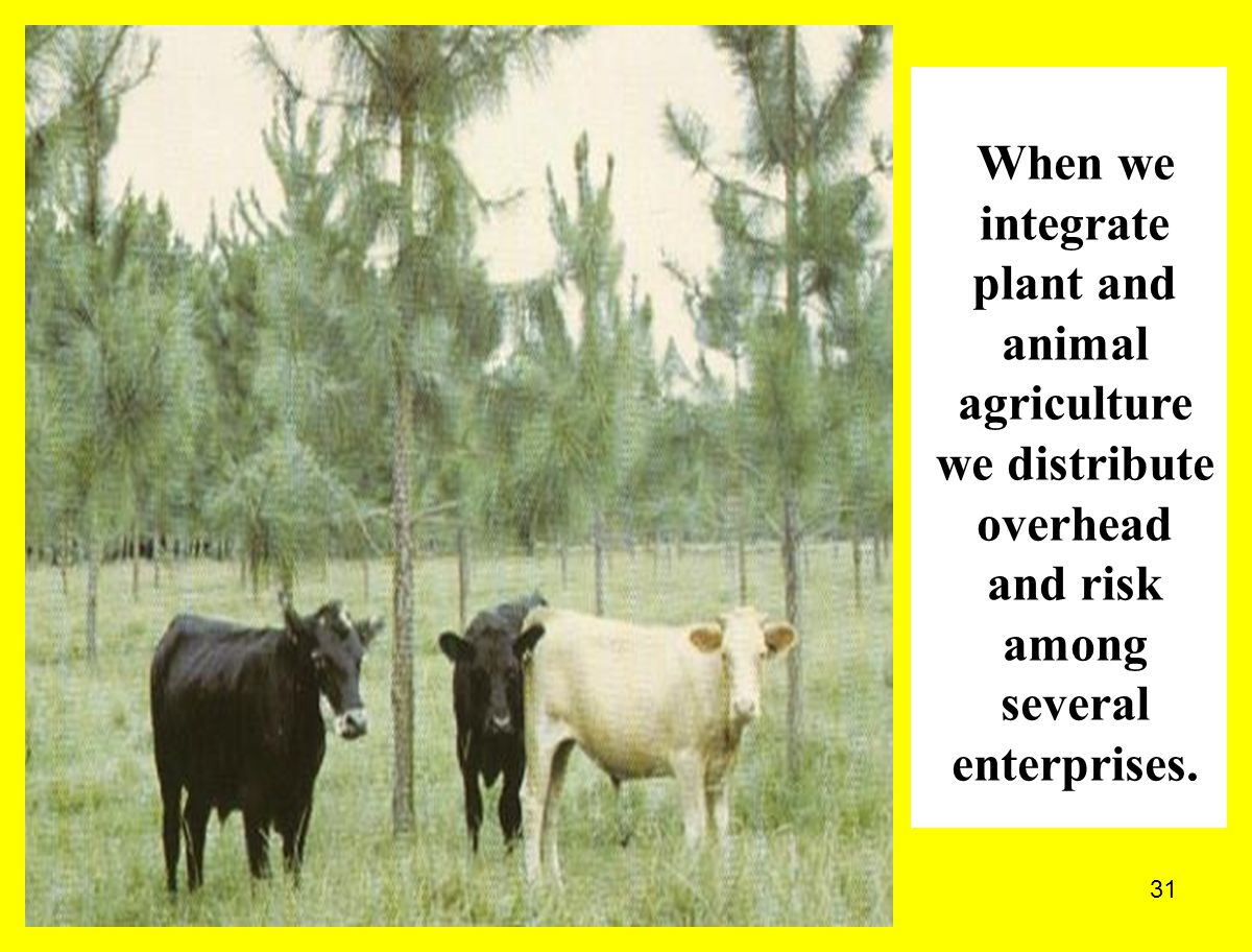 When we integrate plant and animal agriculture we distribute overhead and risk among several enterprises.