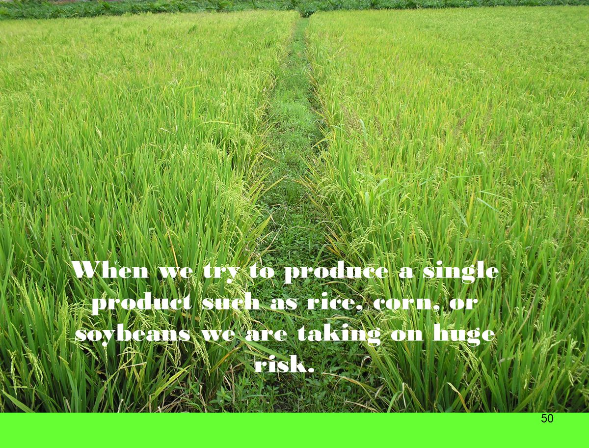 When we try to produce a single product such as rice, corn, or soybeans we are taking on huge risk.