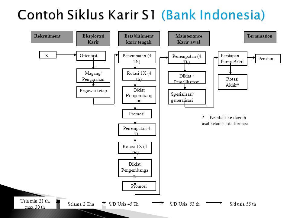Contoh Siklus Karir S1 (Bank Indonesia)