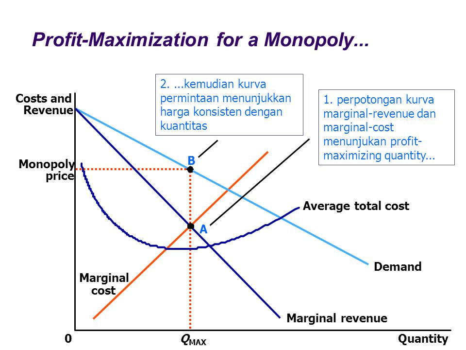 Profit-Maximization for a Monopoly...