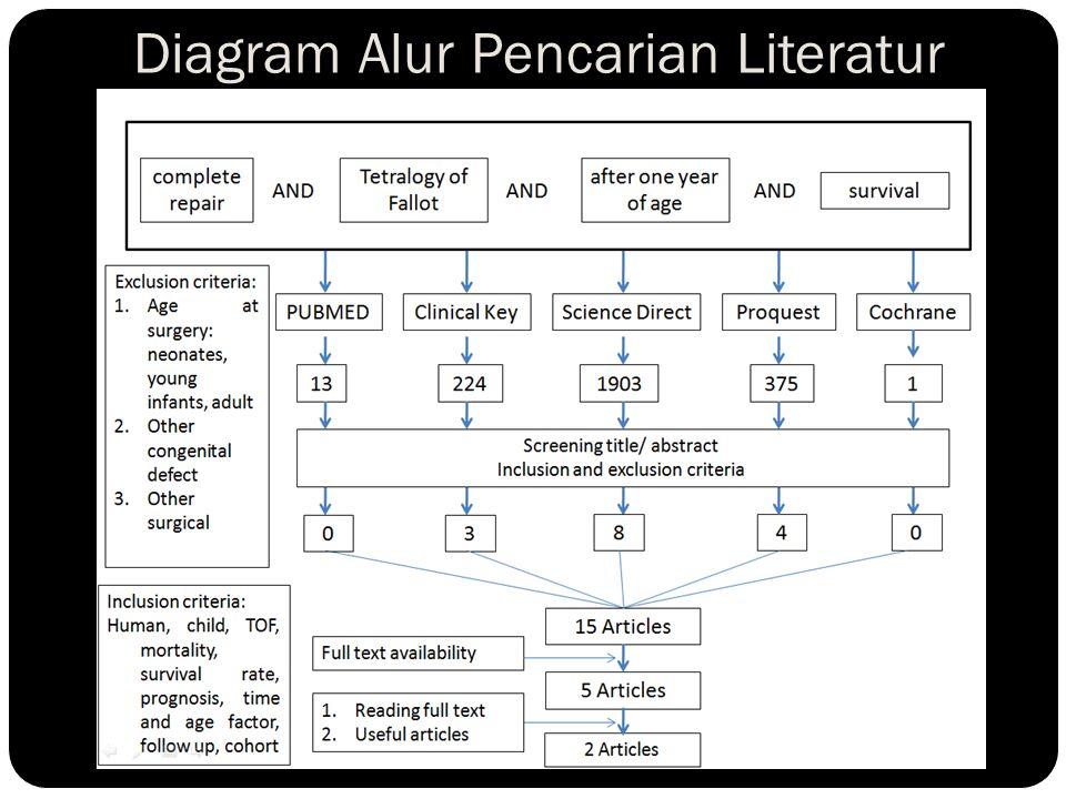 Diagram Alur Pencarian Literatur
