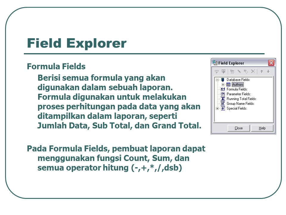 Field Explorer Formula Fields
