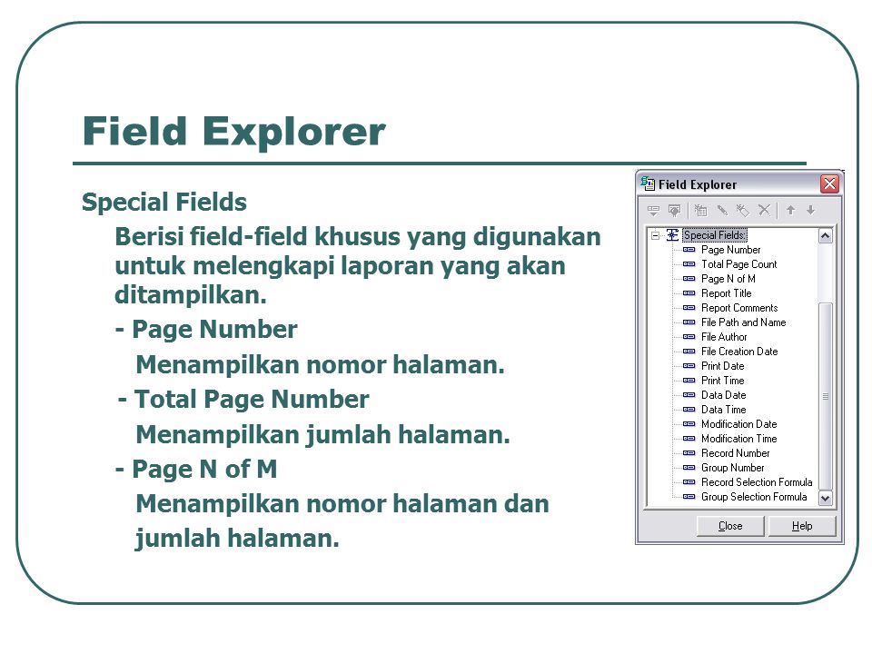 Field Explorer Special Fields