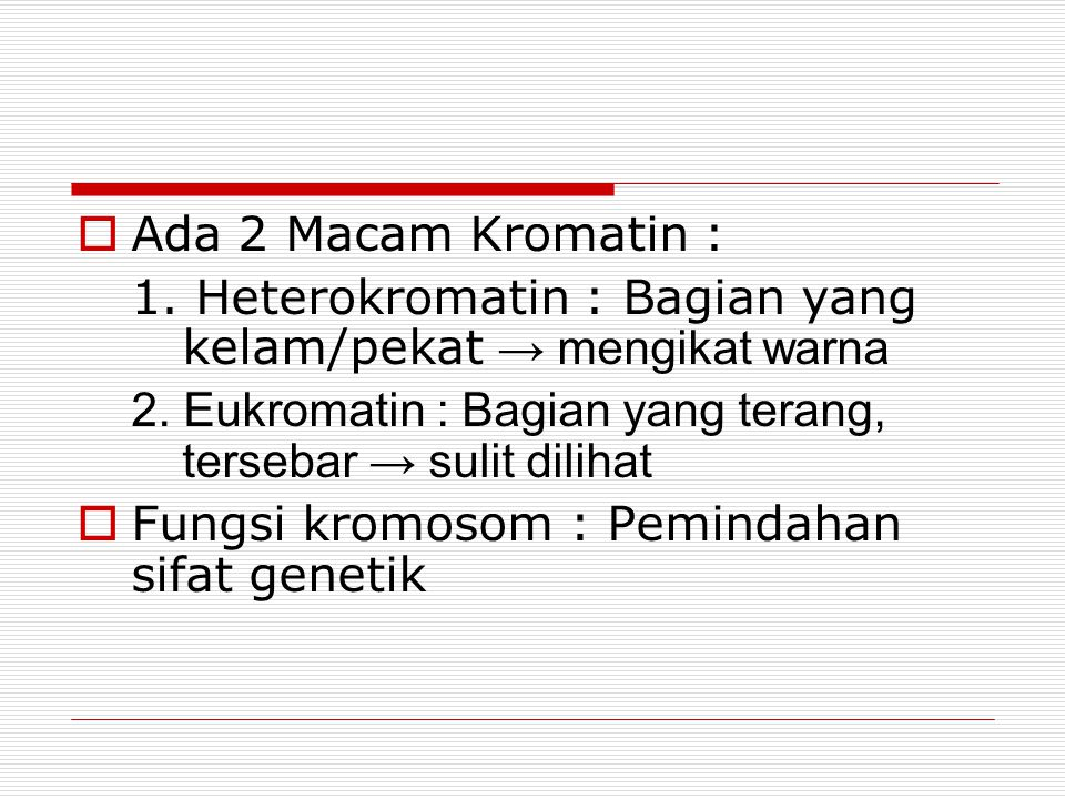 Ada 2 Macam Kromatin : 1. Heterokromatin : Bagian yang kelam/pekat → mengikat warna. 2. Eukromatin : Bagian yang terang, tersebar → sulit dilihat.