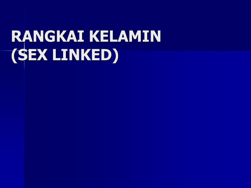 RANGKAI KELAMIN (SEX LINKED)