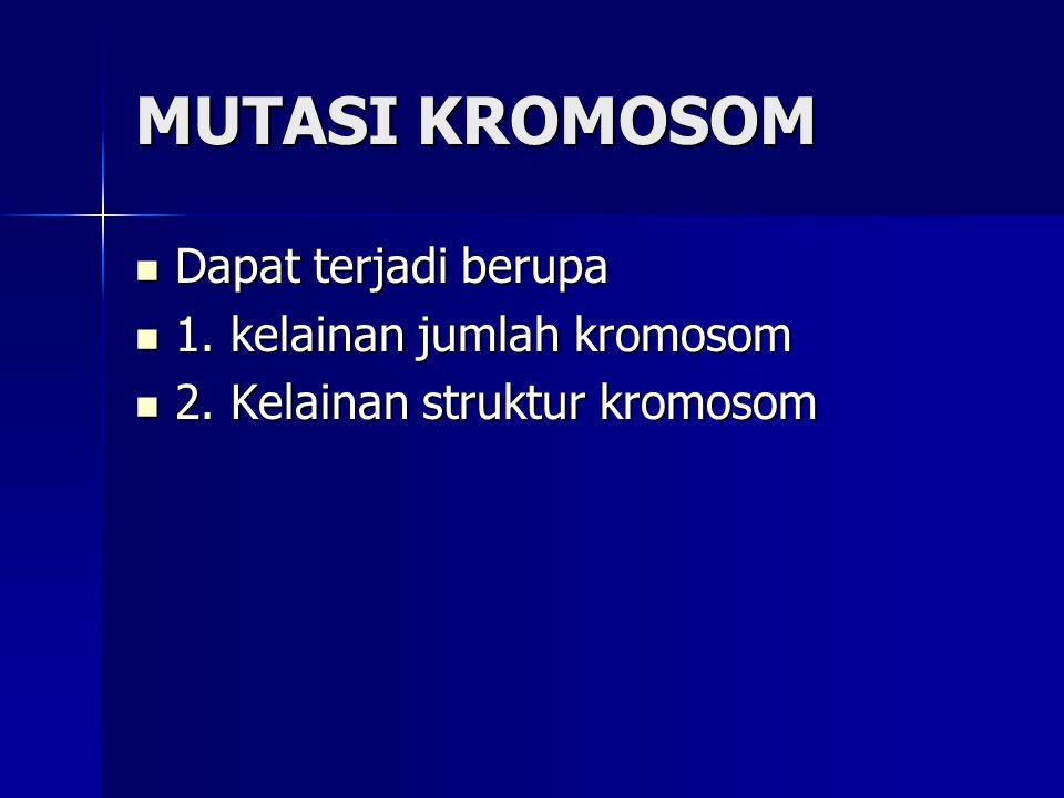 MUTASI KROMOSOM Dapat terjadi berupa 1. kelainan jumlah kromosom