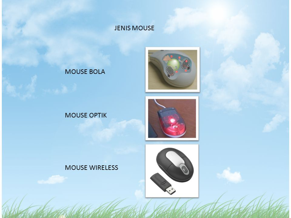 JENIS MOUSE MOUSE BOLA MOUSE OPTIK MOUSE WIRELESS