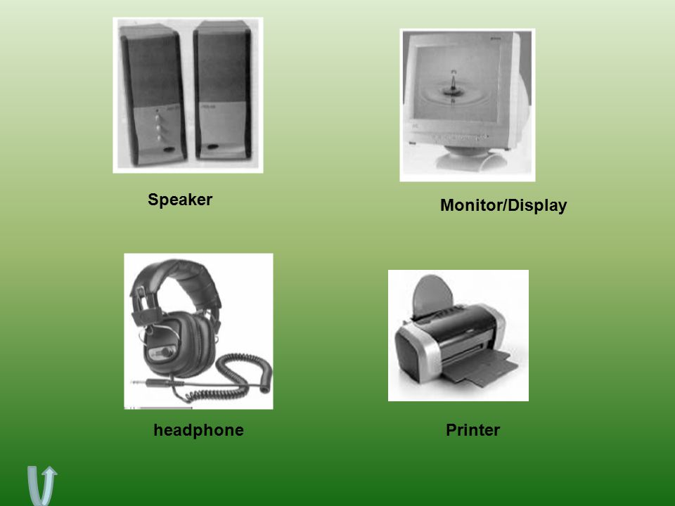 Speaker Monitor/Display headphone Printer
