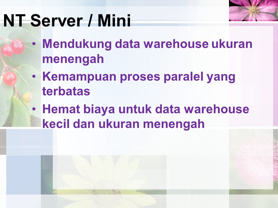 NT Server / Mini Mendukung data warehouse ukuran menengah