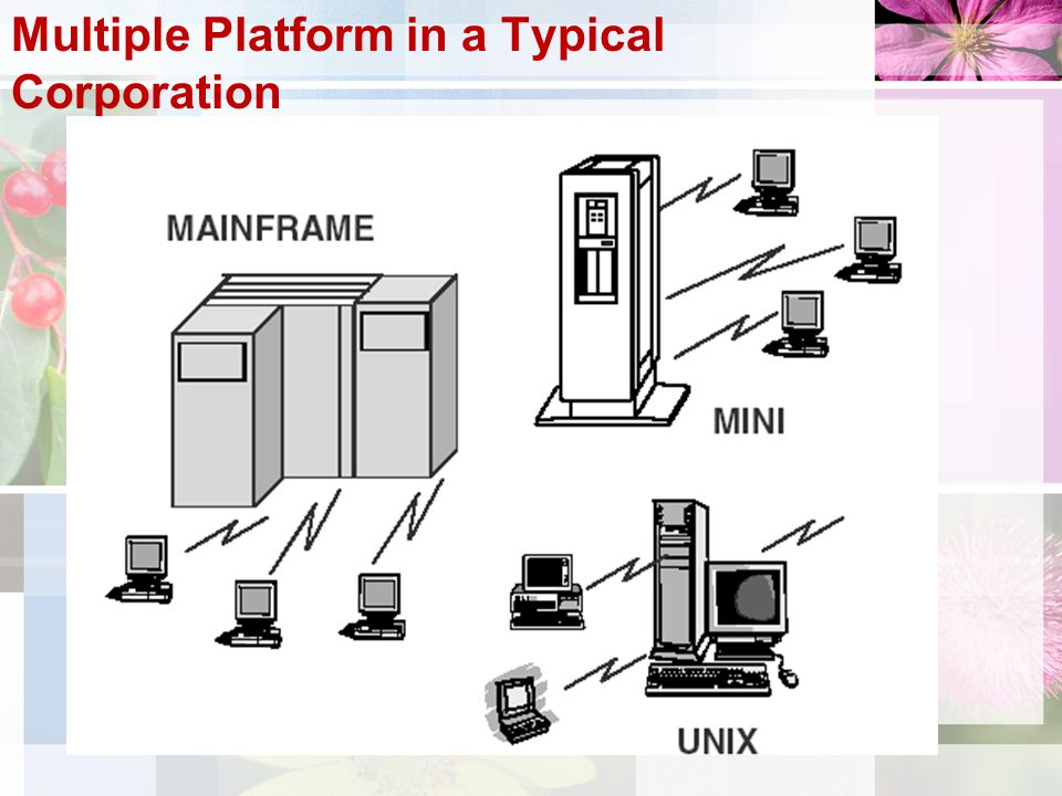 Multiple Platform in a Typical Corporation